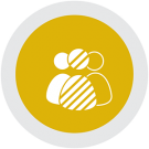 dimensions of diversity category icon
